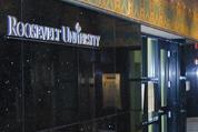 Roosevelt University - interior
